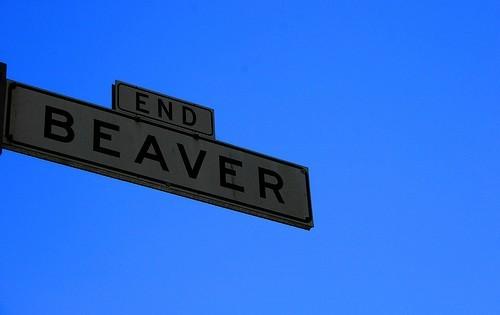 End Beaver