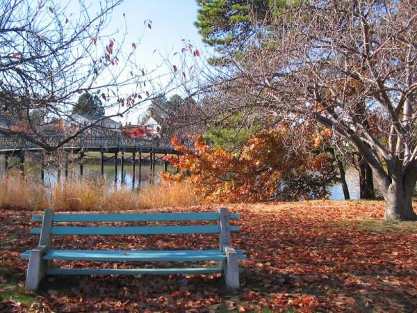 Autumn in Spring Lake 2007