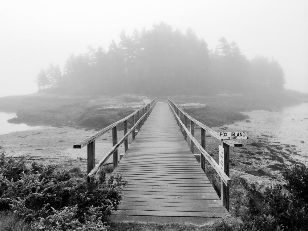 Fox Island in the fog