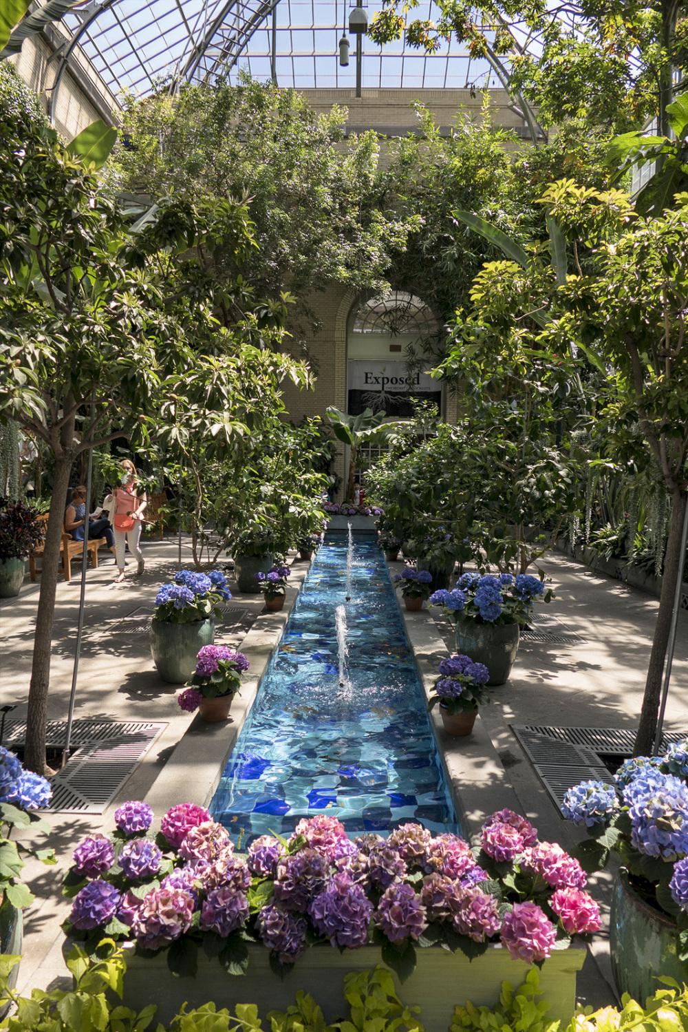 Botanic garden pool