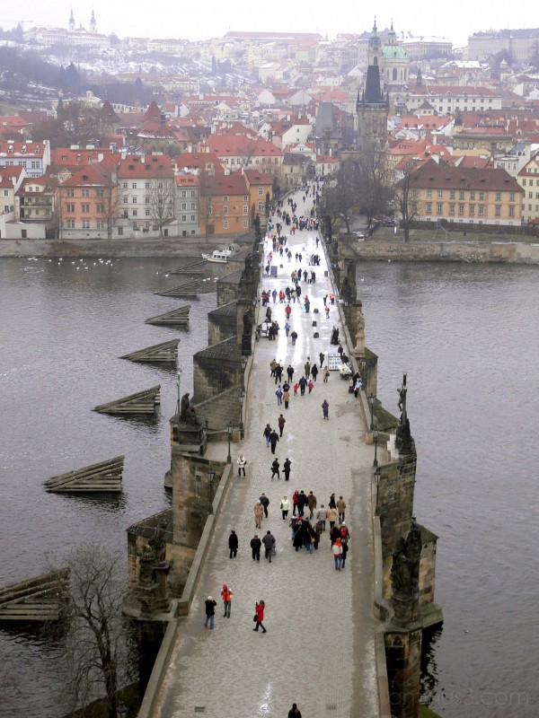 Looking down on Charles Bridge