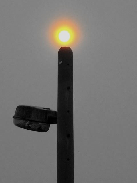 sun on a lamp post