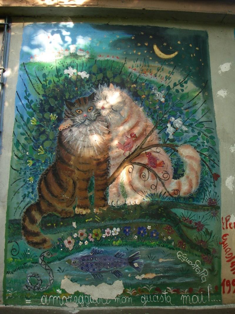 boat cats