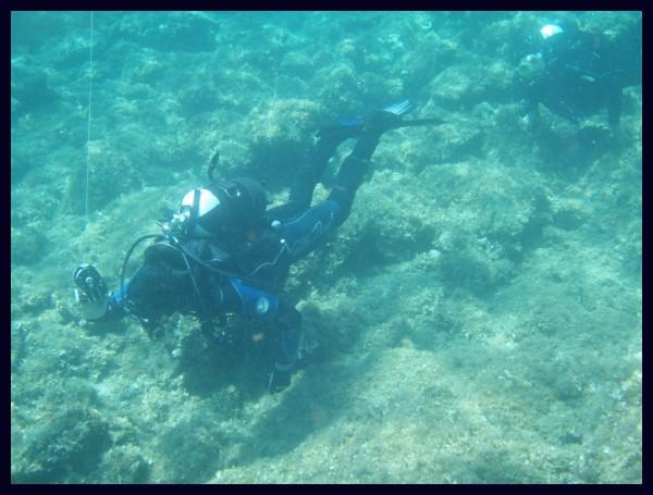 head diver