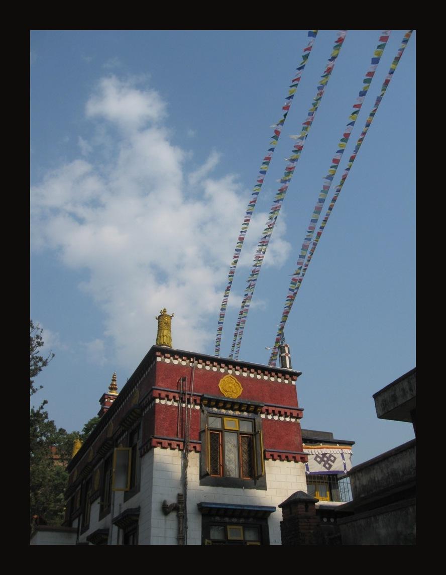 help Nepal 8