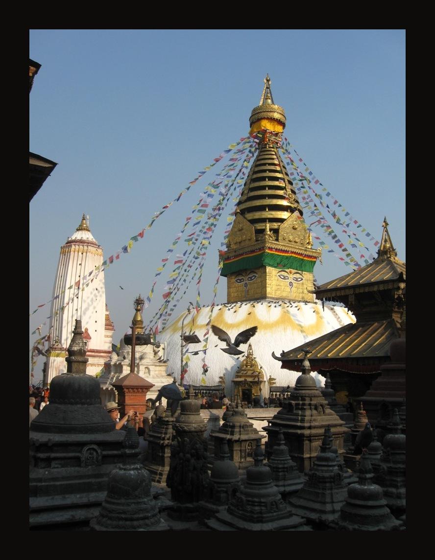 help Nepal 19