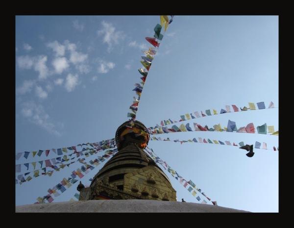 help Nepal 21