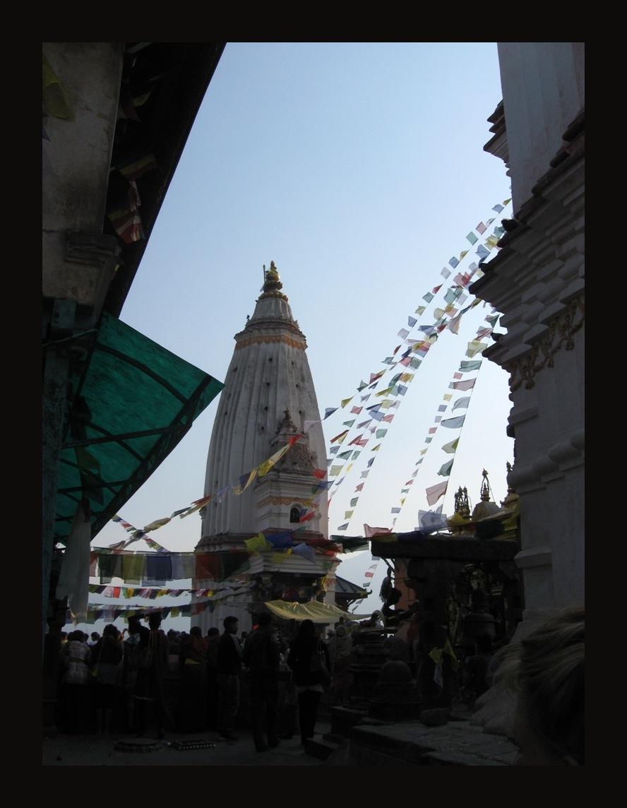 help Nepal 22