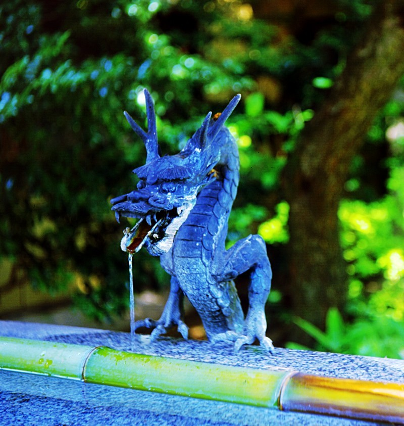 Dragon at Japanese Buddhist temple