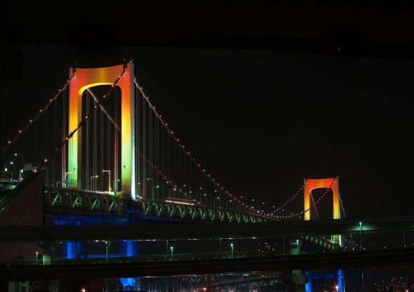 Tokyo Bay After Dark V
