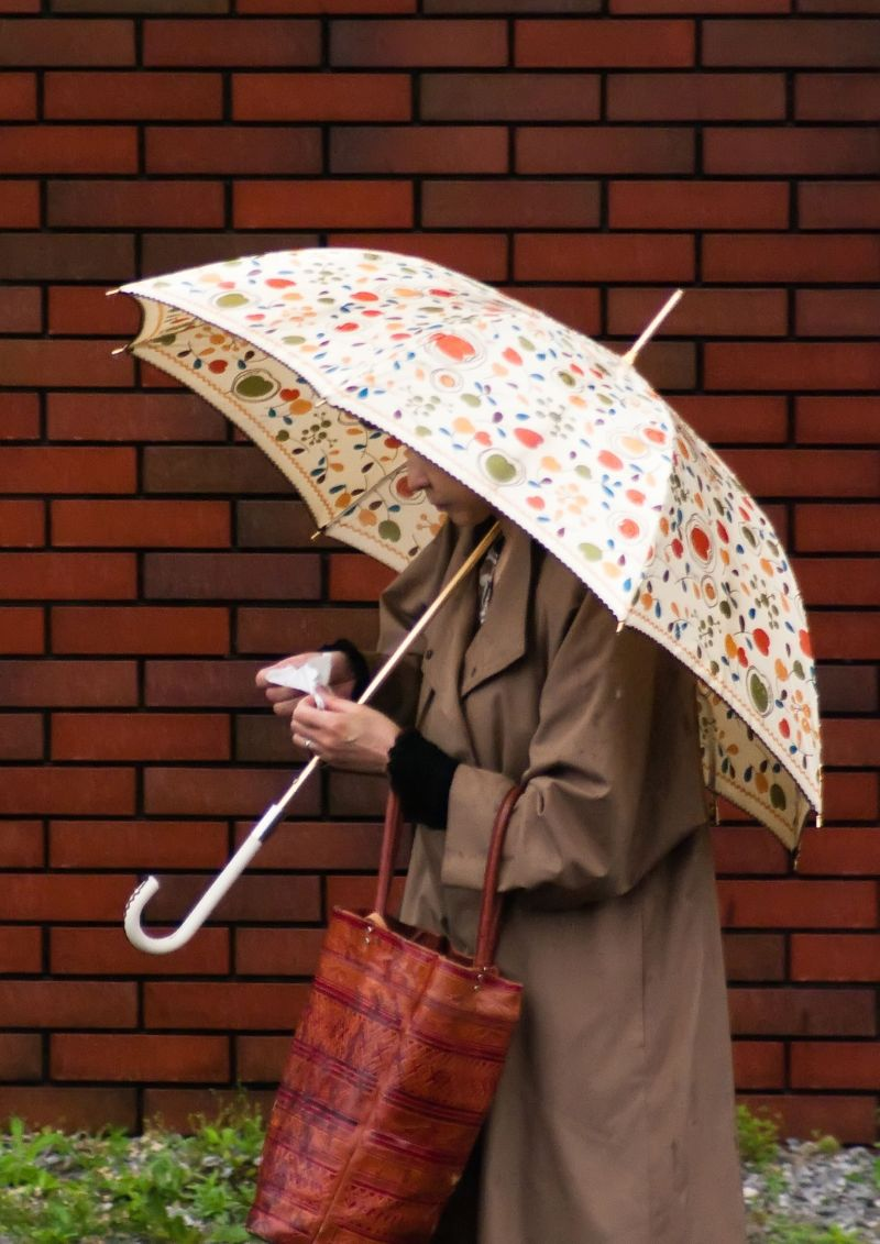 One Rainy Day in Tokyo IV