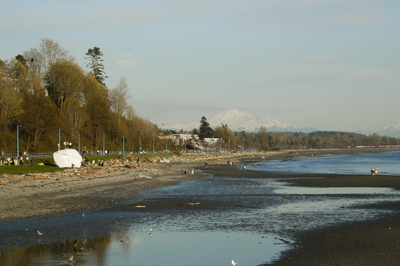THE WHITE ROCK