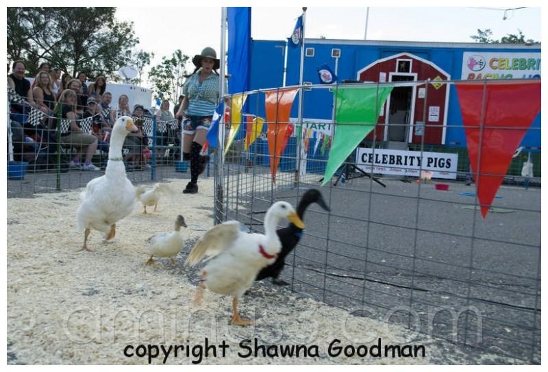 fair,Regina Exhibition