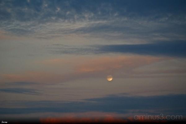 Beach Moon Rise Tybee Island Georgia