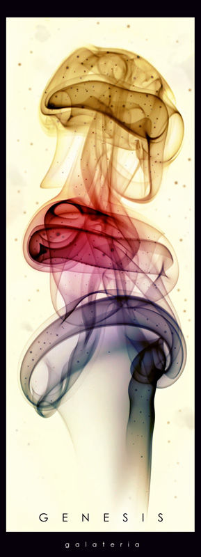 GENESIS - galateria / jellyntry