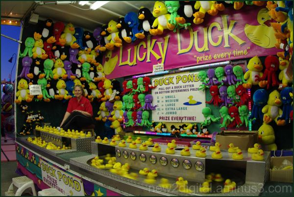 Lucky Duck