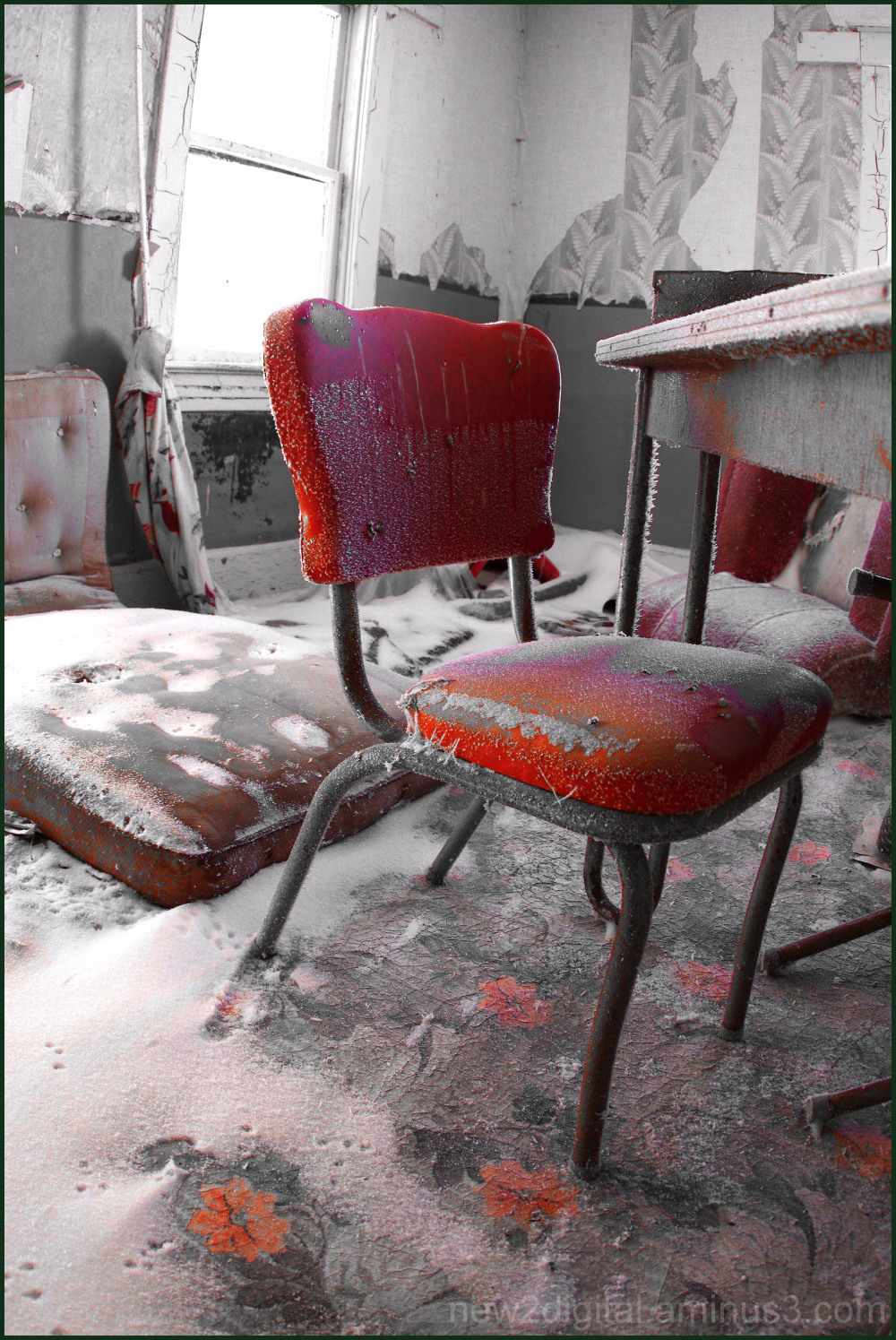 The Red Kitchen Chair 3/3