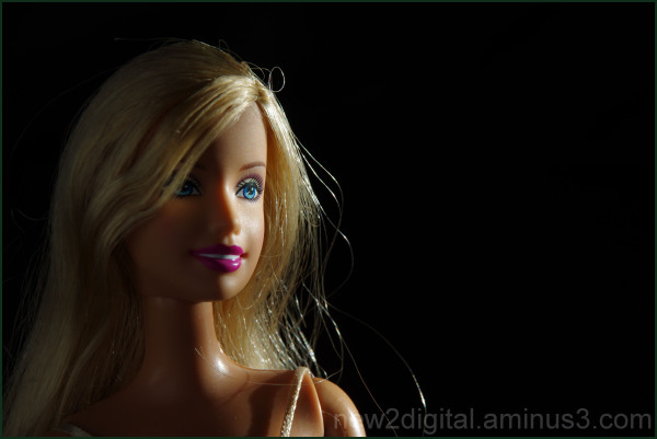 Dramatic Light on Barbie
