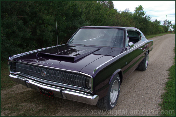 Nephew's Charger 3/3