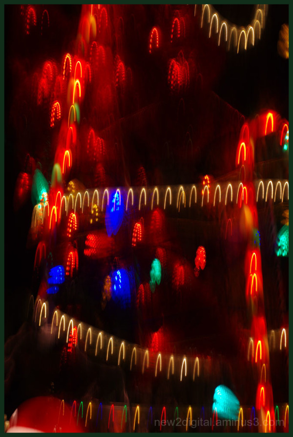 12 Days of Christmas Lights - Day 3