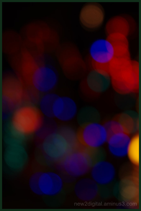 12 Days of Christmas Lights - Day 4