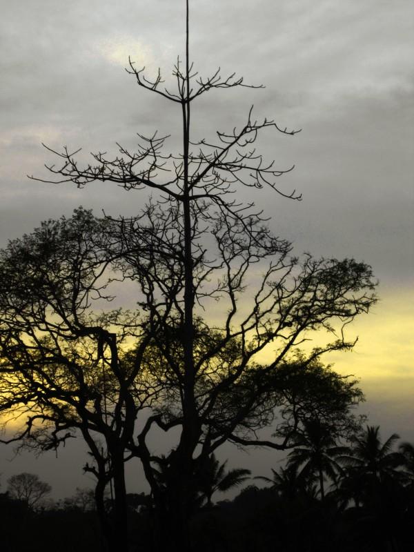 Soothing Skies II