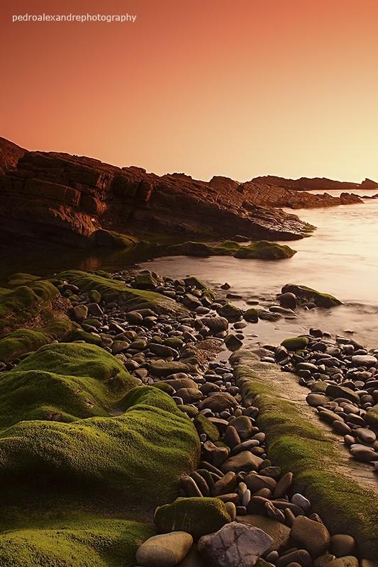 the green rocks