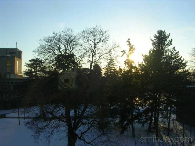 Sunset at Guelph