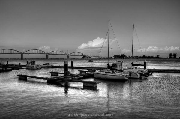 Vila Franca de Xira, Portugal, Boats