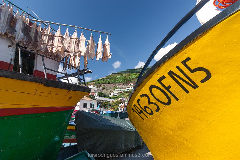 Camara de Lobos Madeira Island Portugal Fishing