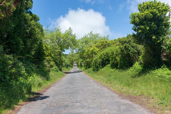 Faial Roads Azores Portugal