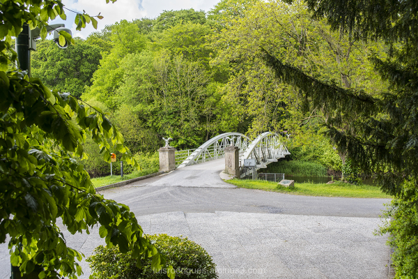 cahir swiss cottage bridge IRELAND