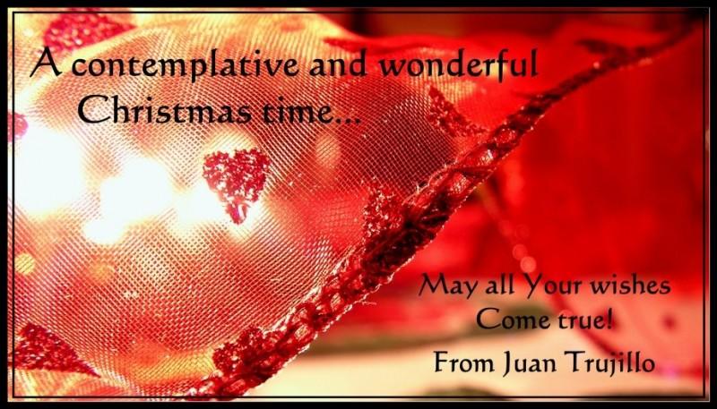 Frohe Weihnachten... Merry Christmas...