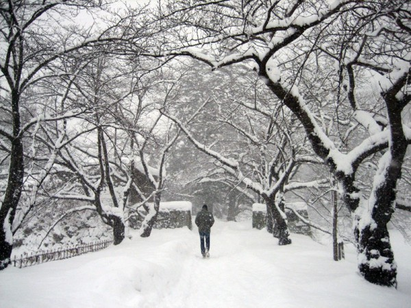 Winter in Aizuwakamatsu