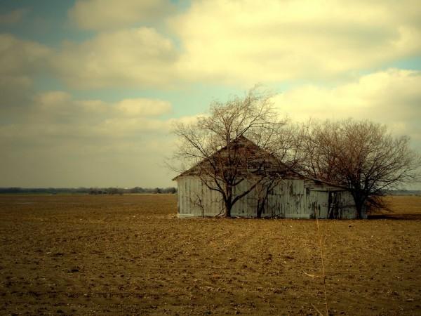 Winter harvest over.....