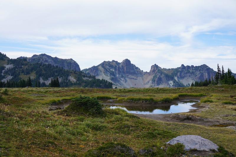 Pond and ridge seen from Spray Park, Mt. Rainier
