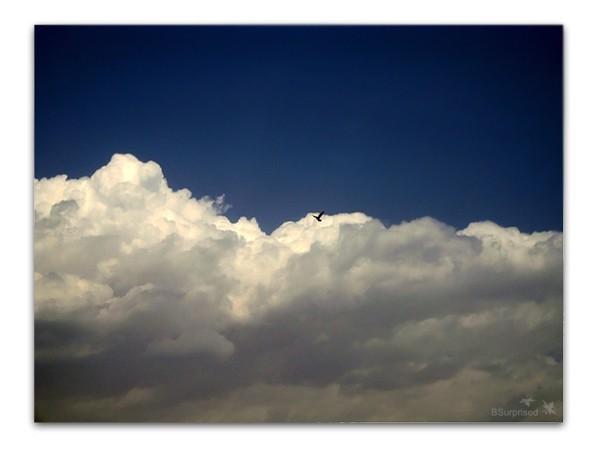 The Journey - High, Flying (II)
