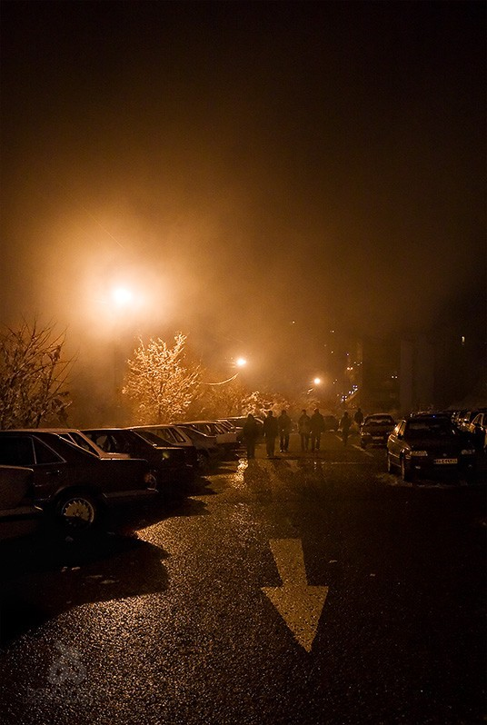 Fog in Parking Lot