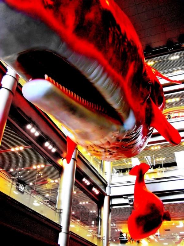 red whale umeda Hep5 japan osaka