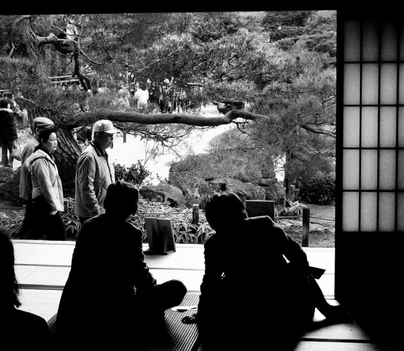 Tenryu-ji temple Arashiyama, Kyoto garden