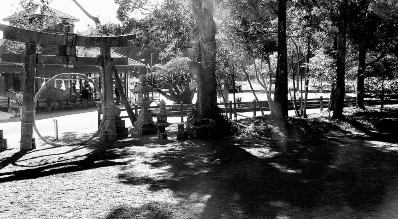 countryside Shikoku shrine Japan torii