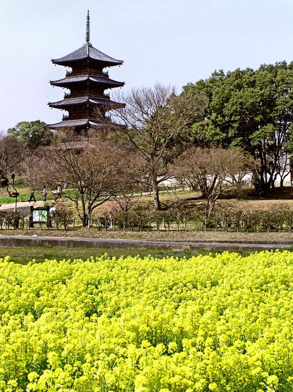 Bitchu-Kokubunji Okayama Japan field Kibi pagoda