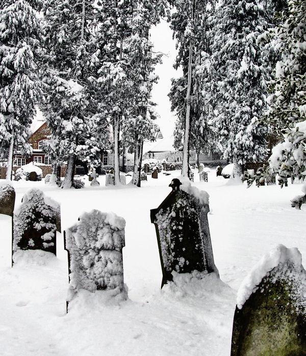 farnham england snow tree cemetary gravestone