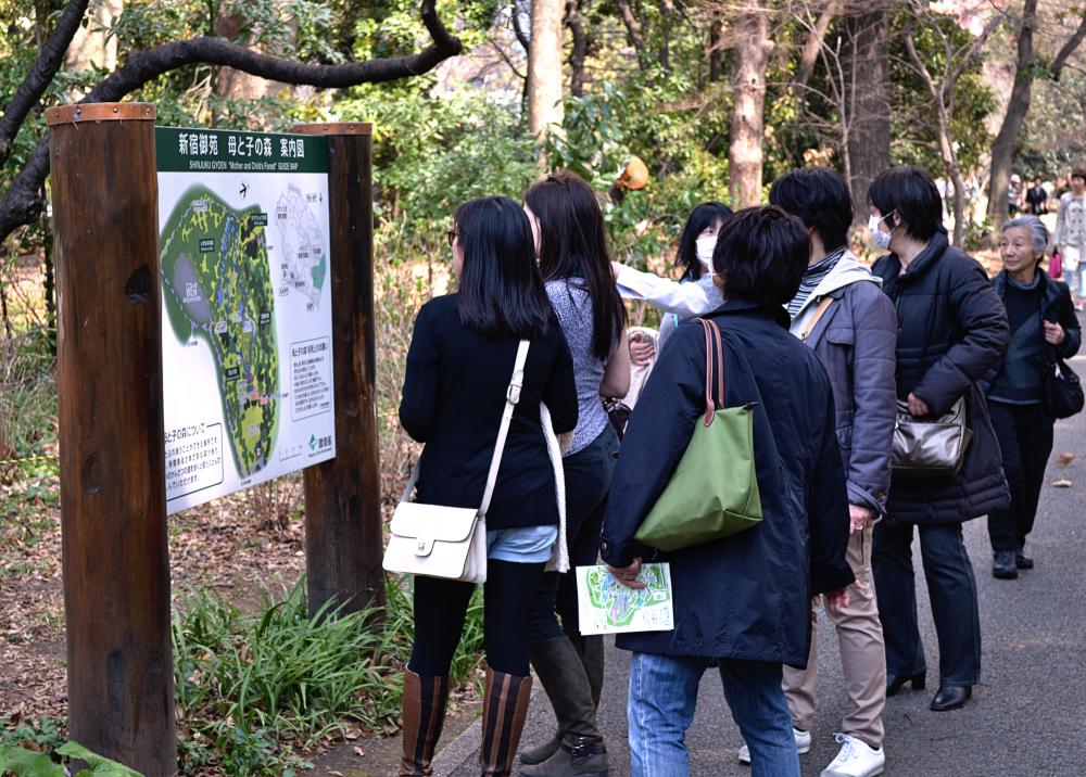 park tokyo shinjuku shinjuku-park japan