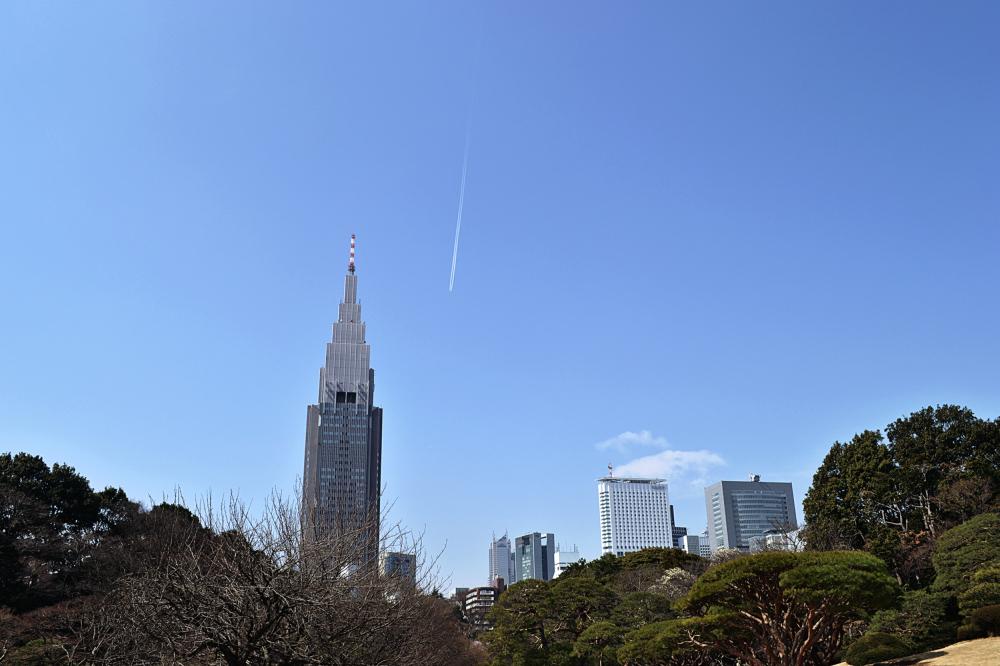 park skyscraper tokyo shinjuku shinjuku-park japan