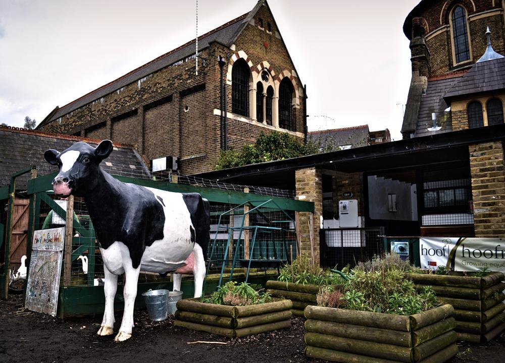 vauxhall london england farm vauxhall-city-farm