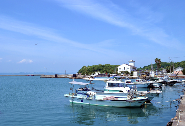 japan kagawa teshima harbour boat