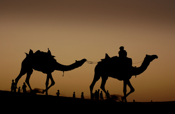 Dragging it along the desert