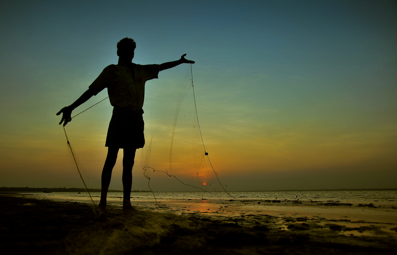 Lowering his nets