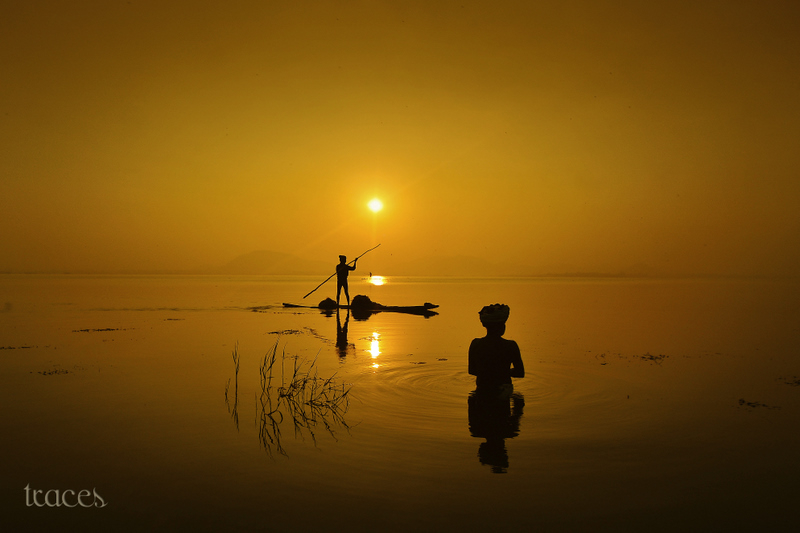 Fishing in serene golden waters
